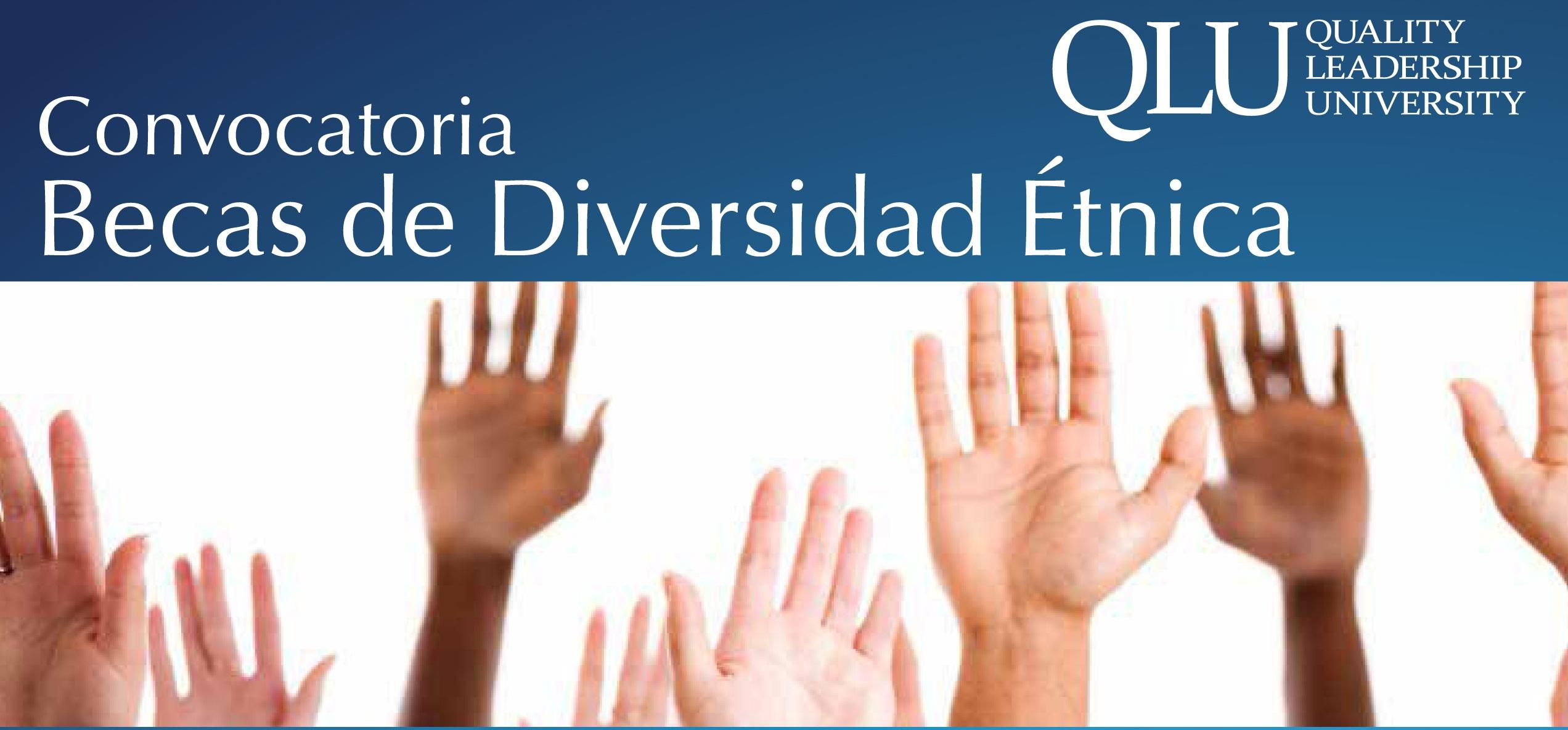 Convocatoria Becas De Diversidad Tnica