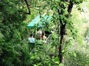 gamboa-rain-forest